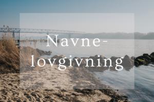 blogindlæg om navnelovgivningen i danmark