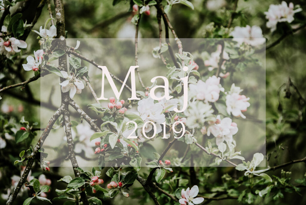 maj 2019, numerologisk energi, numerologi, numerologisk prognose